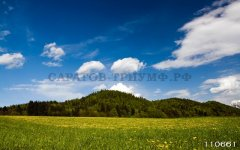 Пейзаж 4