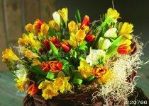 Цветы 5